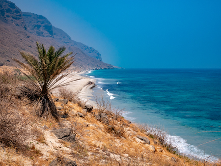 View of a doselate beach and mountains in the distance near Salalah, Oman