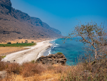 Dry and hot rocks and plants in the foreground with a lonely stretch of beach in the distance near Salalah, Oman