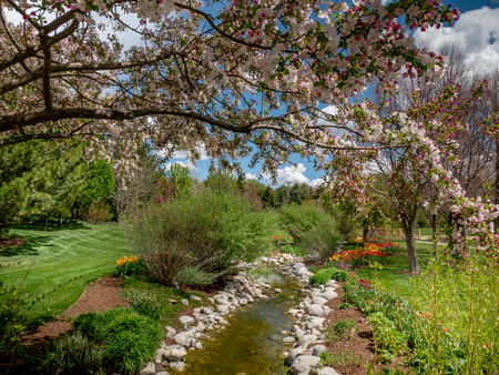 Small stream flowing through a park with flowers and blossoming trees all around