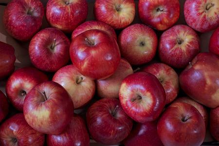 Red apples (Background). Banco de Imagens