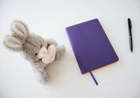Top view of fluffy rabbit with purple notebook on white background workspace. 版權商用圖片