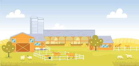 Country Cattle Farm with different Domestic Animal. Separate Corral for Different Animal, Cow with Bull, Pig, Horse and Mule. Sheep with Ram Graze in Meadow. Haystack for Feeding Livestock in Barn.  イラスト・ベクター素材