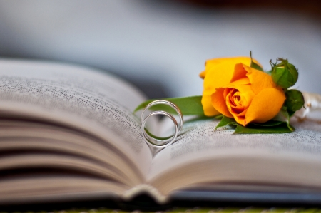 buttonhole: wedding rings and buttonhole of the groom in the opened book