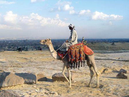bedouin: Riding bedouin. Camel in Egyptian desert near Pyramides. Stock Photo