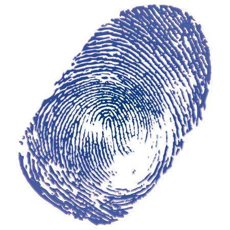 odcisk kciuka: Odcisk palca niebieskim tuszem na białym tle Ilustracja