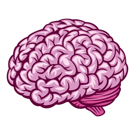 Brain. Vector Illustration Stock Vector - 9327699