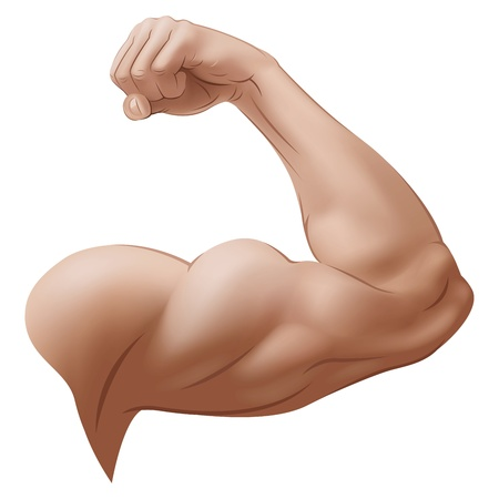 weightlifting: Mans Arm. Vector Illustration (with gradient meshes)
