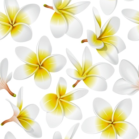 Frangipani (Plumeria) tropical flowers. Seamless pattern background. Vector illustration  Illustration