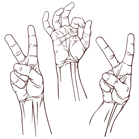 three hands: Set of three Victory and OK symbol hands  Vector illustration