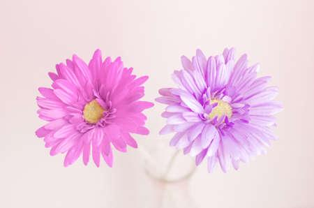colores pasteles: Pastel artificial flower in bottle with vintage color and soft focus Foto de archivo