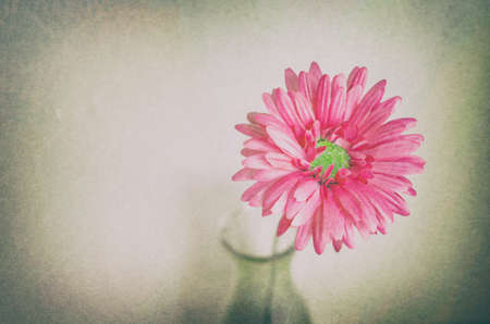 grunge bottle: Pastel artificial flower in bottle with grunge and vintage tone