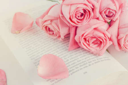 Close up of pink pastel rose flower bouquet with pink petal rose close up of pink pastel rose flower bouquet with pink petal rose on opened book with mightylinksfo