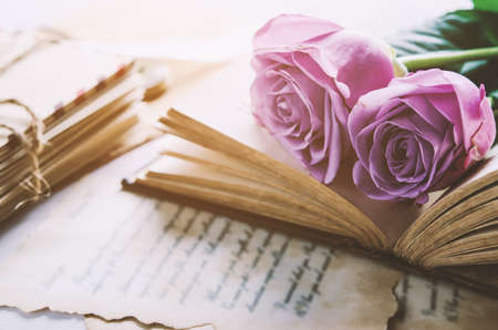 Close up of violet purple rose flower with love letters and feather quill, Rose and old paper with vintage and vignette tone Stock fotó