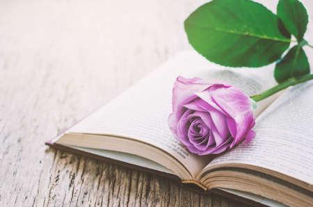 Cierre De Púrpura Violeta De Flores Color De Rosa Y El Libro Abierto ...