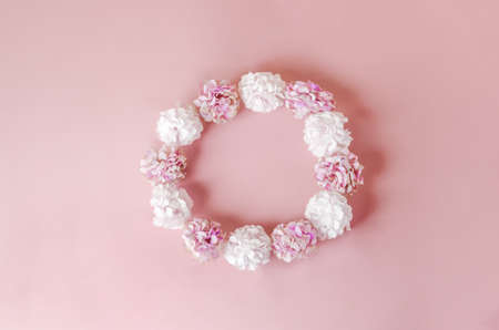 White and pink color of Hydrangea flowers with round frame shape on pink pastel background