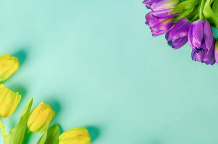 Artificial yellow and purple tulip flowers bouquet on light green blue background