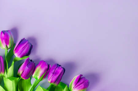 Artificial purple tulip flowers bouquet on light purple background Stock Photo