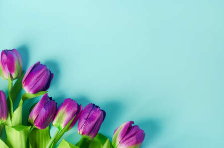 Artificial purple tulip flowers bouquet on light blue background Stock Photo