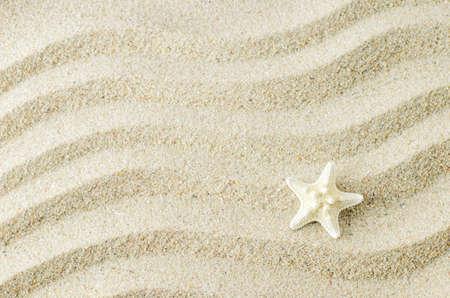 波のパターンを持つ砂のテクスチャの背景に白ヒトデ 写真素材 - 102685867