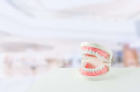 Close up of white teeth model with red gum and dental mirror on blur background