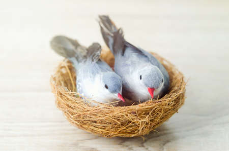 Close up of couple artificial birds with nest on wooden background Stock Photo