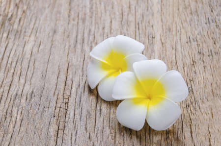 Plumeria flowers on wooden background with vintage and vignette tone