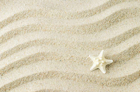 White starfish on sand texture background with wave pattern