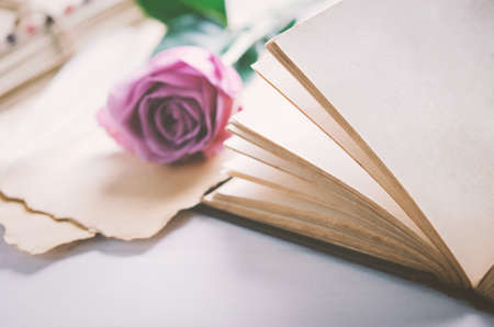 Close up of opened old book with violet purple rose flower and love letters, Rose and old paper with vintage and vignette tone 写真素材