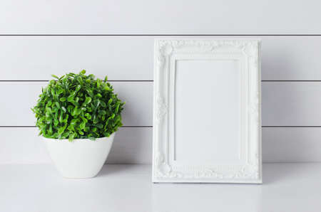 Blank vintage photo frame with green home plant at white vase on white wooden background