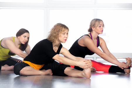 janu: Group of beautiful females sitting yoga asana in class, prepare for Janu Sirsasana, djanu shirshasana (tilt head to knee) Stock Photo