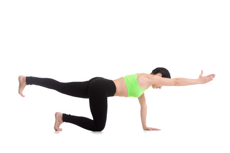 Beautiful sporty girl practices yoga, pilates, doing balance exercise bird dog, kneeling opposite arm and leg extension, asana sunbird (chakravakasana), fitness training for spine and shoulders Stock Photo