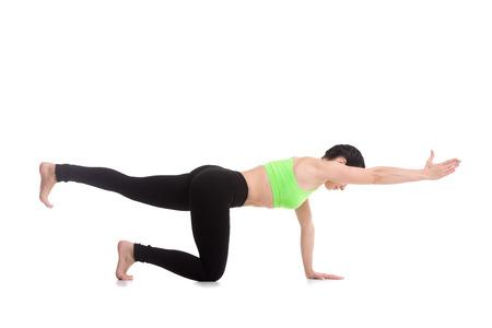 fitness training: Mooie sportieve meisje yoga, pilates, doen evenwicht oefening vogel hond, geknield tegenover arm en been uitbreiding, asana sunbird (chakravakasana), fitness training voor de rug en schouders