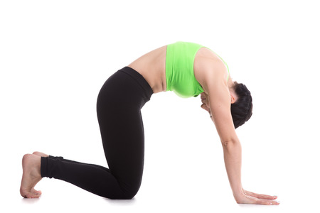 Beautiful sporty girl practices backbend in Cat yoga Pose, Marjaryasana, exercise for flexible spine and shoulders, asana often paired with Cow Pose on the inhale, yoga for relieving stress Stok Fotoğraf