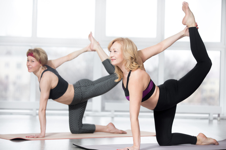 mujer rodillas: Gimnasio, que se extiende la práctica, grupo de dos mujeres maduras atractivas que se resuelve en club deportivo, haciendo ejercicio de equilibrio perro de caza, Sunbird (chakravakasana) para los músculos abdominales y la espalda en la clase, de cuerpo entero