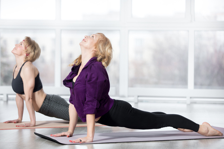 wellbeing: Fitness, stretching practice, group of two attractive smiling fit mature women in sportswear working out in sports club, doing urdhva mukha shvanasana (upward facing dog pose) in class, full length