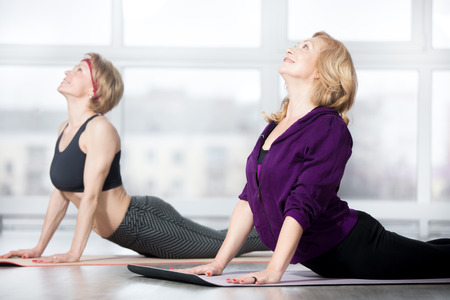 gym room: Fitness, stretching practice, group of two attractive smiling fit mature women in sportswear working out in sports club, doing Cobra posture, backbend exercise, bhudjangasana (Bhujangasana) in class