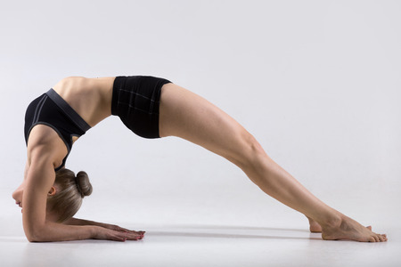 dwi: Sporty beautiful young woman practicing yoga, doing variation of Bridge Pose on elbows, Two-Legged Inverted Staff yoga Pose, Dvi Pada Viparita Dandasana, working out wearing black sportswear, studio