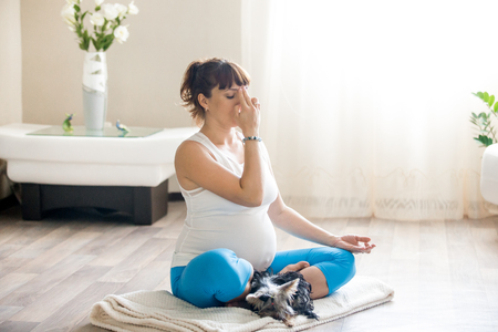 pranayama: Healthy lifestyle concept. Pregnancy Yoga and Fitness. Young pregnant yoga woman working out with her pet dog in living room. Pregnant model relaxing during yoga practice at home. Prenatal Pranayama