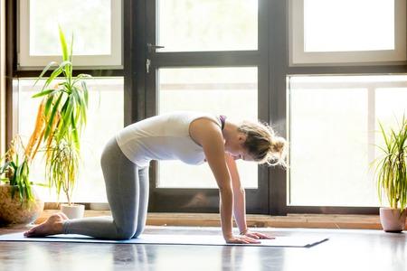 Volledige lengte portret van aantrekkelijke jonge vrouw uit te werken thuis in de woonkamer, het doen van yoga of pilates oefening op mat. Cat Pose, Marjaryasana, asana gecombineerd met Koe Pose op de inademing. Zijaanzicht