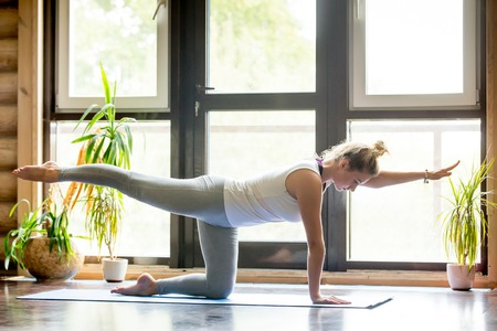 In voller Länge Portrait der schönen jungen Frau, die zu Hause im Wohnzimmer aus, macht Yoga oder Pilates-Übung auf der Matte. Vogel-Hund oder anderen Arm und Beinverlängerung chakravakasana kniet. Seitenansicht Standard-Bild - 63556067