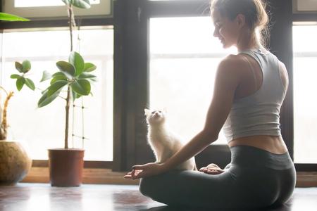 mujer meditando: Joven atractiva mujer sonriente practicar yoga, sentado en el medio ejercicio de loto, Ardha Padmasana plantean, trabajando, llevando ropa deportiva, pantalones grises, sujetador, interior, interior de casa de fondo, gato cerca de ella