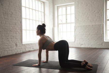 ashtanga: Young attractive yogi woman practicing yoga concept, standing in asana paired with Cat Pose on the exhale exercise, Cow, Bitilasana pose, working out, wearing sportswear, white loft studio background