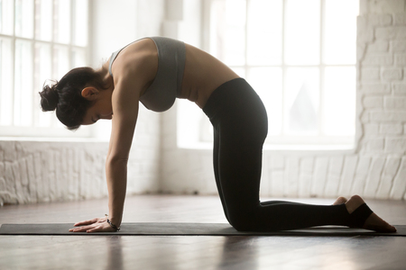 ashtanga: Yogi woman practicing yoga concept, standing in Cat exercise, Marjaryasana pose, working out, wearing black sportswear bra and pants, full length silhouette on white loft studio background. Side view Stock Photo