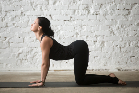 Mid aged yogi woman practicing yoga concept, standing in Cat exercise, Marjaryasana pose, asana paired with Cow Pose on the inhale, working out, wearing sportswear, full length, white loft background