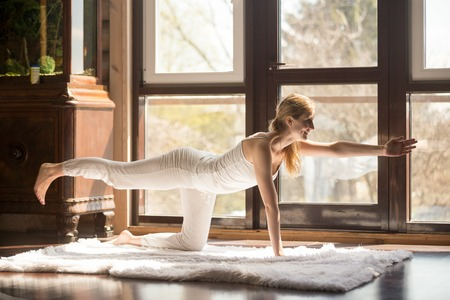 Young yogi attractive woman practicing yoga concept, standing in Donkey Kick exercise, Bird dog pose, working out, wearing white sportswear, full length, home interior background Stock Photo
