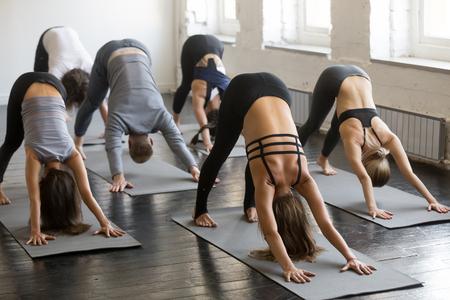 Grupa młodych sportowo atrakcyjnych osób ćwiczących lekcję jogi z instruktorem, rozciąganie w pozycji skierowanej w dół, pozycja adho mukha svanasana, przyjaciele ćwiczący w klubie, na całej długości, studio