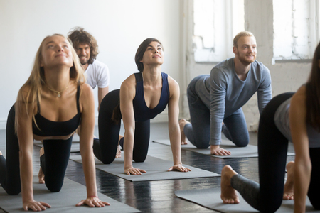 Group of young sporty people practicing yoga lesson with instructor, stretching in Cow exercise, Bitilasana pose, working out, indoor closeup, studio, students training in club