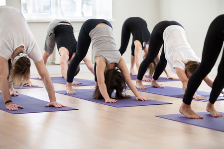 Group of young sporty people practicing yoga lesson, doing Downward facing dog exercise, adho mukha svanasana pose, working out, indoor, students training in club, studio. Well-being concept