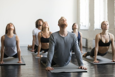 Group of young sporty people practicing yoga lesson, doing upward facing dog exercise, Urdhva mukha shvanasana pose, working out, indoor full length, students training in sport club, studio Reklamní fotografie - 112480279