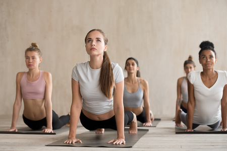 Five beautiful young women practising basic exercises during yoga session. Diverse multiracial concentrated females doing upward facing dog position, strengthen legs and buttocks, shoulders and arms